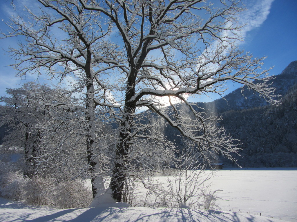 Winter on Thumsee